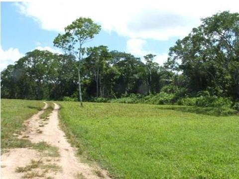 near Belmopan City, Cayo, Belize