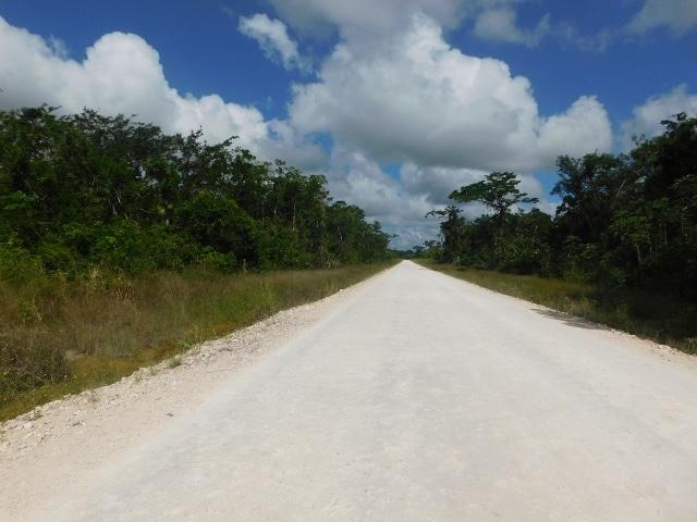 near Belmopan City, Cayo District, Belize