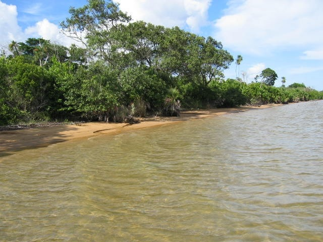 near Dangriga Town, Stann Creek District, Belize