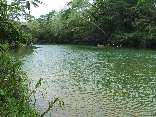 near Teakettle Village, Cayo District, Belize