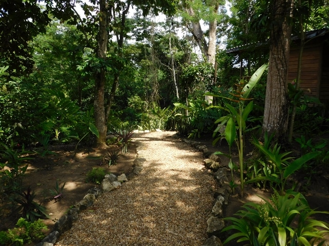 Bullet Tree Falls Village, Cayo