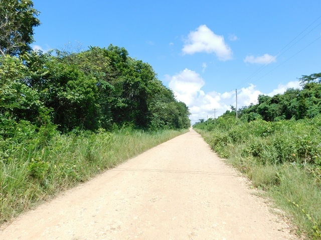near Belmopan, Cayo District, Belize