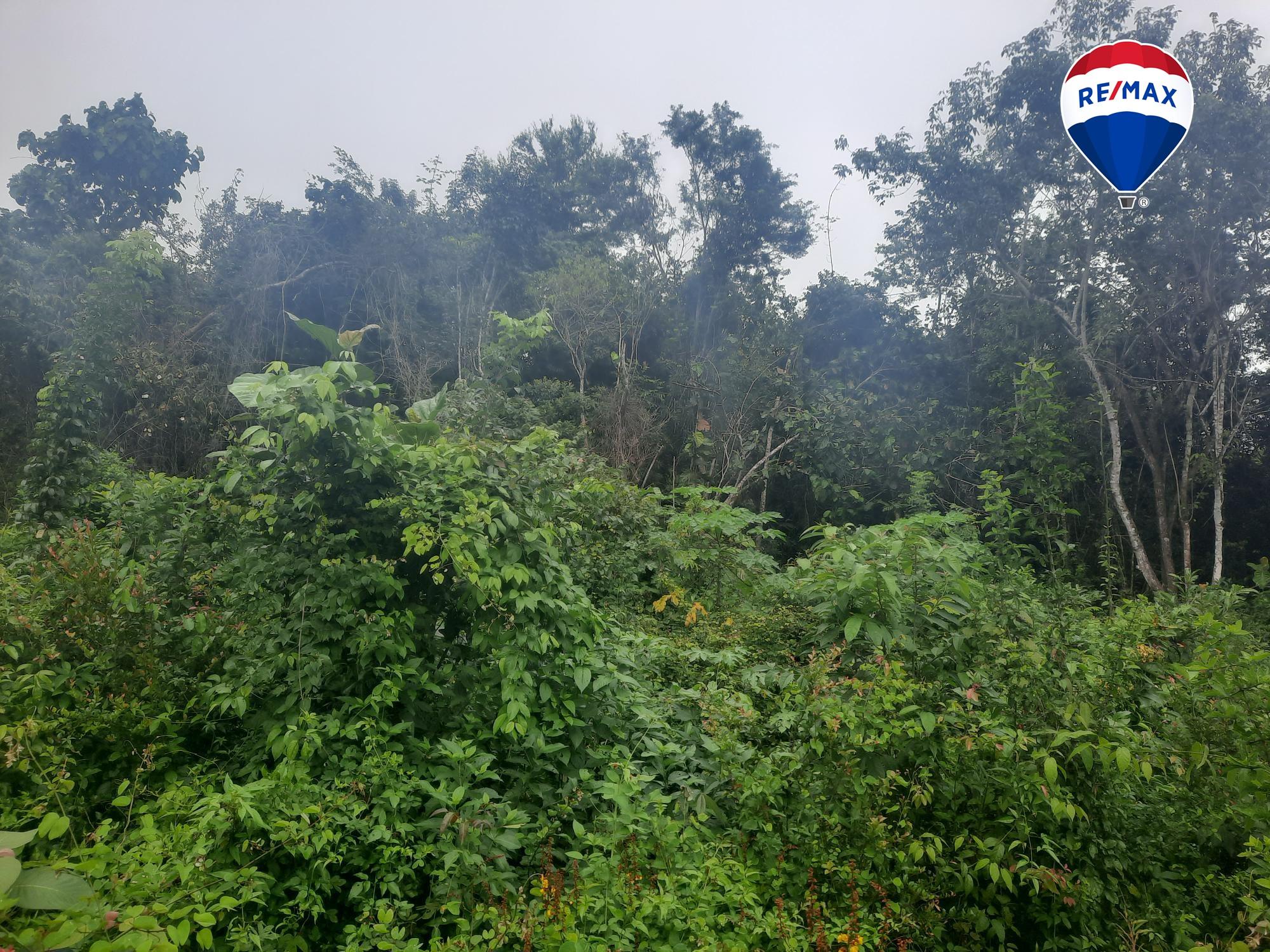 Belmopan City, Cayo District, Belize