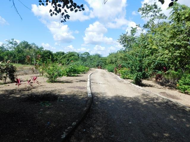 Camalote Village, Cayo District