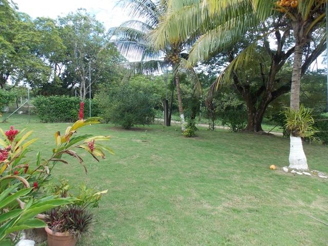 Camalote Village, Cayo District, Belize