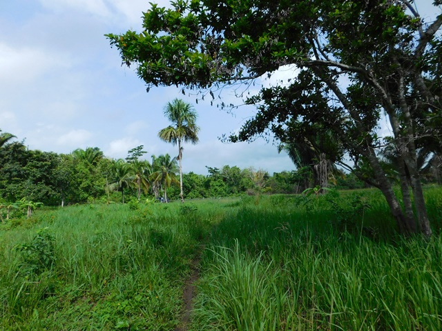 Benque Viejo Del Carmen, Cayo District, Belize