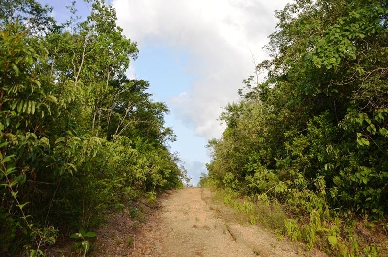 Manatee Highway, Belize District, Belize