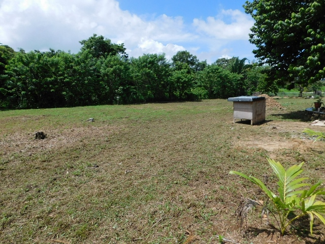 Belmopan, Cayo District, Belize
